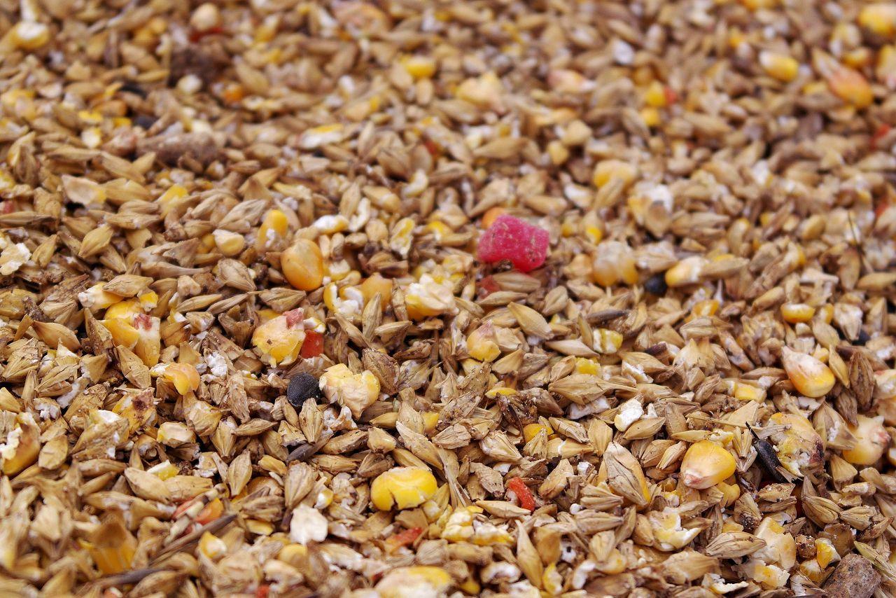 Микронизированные семена