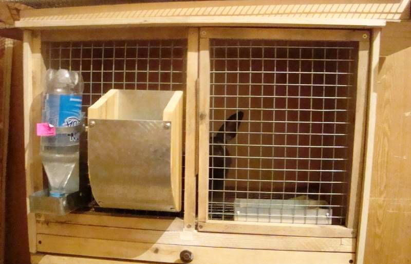 Бункерные кормушки для кроликов своими руками: чертежи и фото