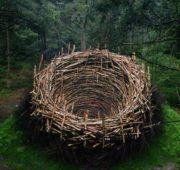 Как сделать гнездо?