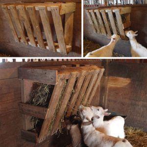 Из двух деревянных щитов можно сделать угловую кормушку