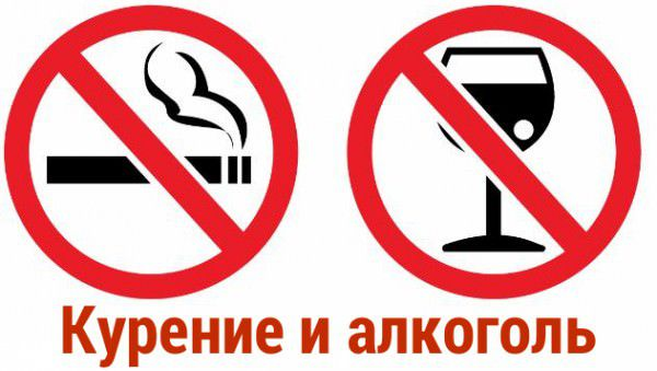 Лошади не переносят запаха алкоголя и табака