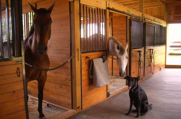 Пример раздвижных дверей в конюшне
