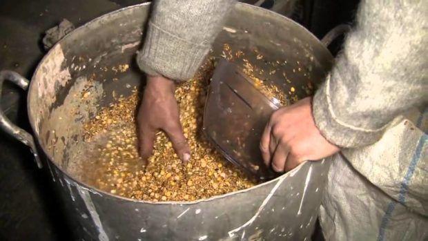 В мешанку для нутрий добавляют овощи, зерно и остатки супов