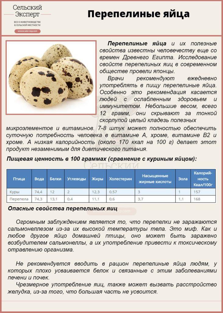 Перепелиная скорлупа польза и вред