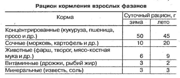 Таблица 4. Зимний и летний рацион