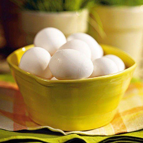 В качестве добавки животного происхождения для овец могут служит куриные яйца