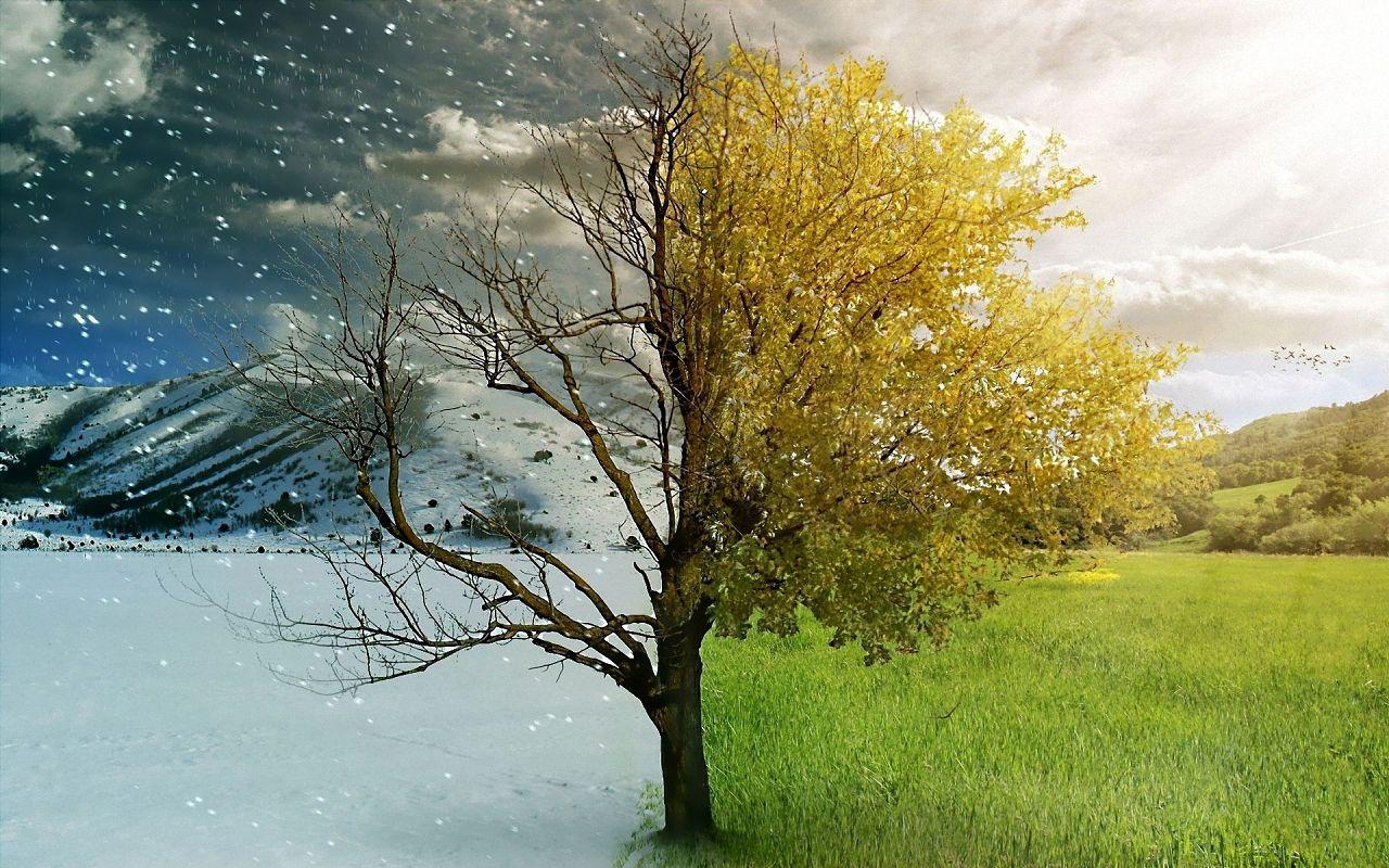 При смене зимней системы питания на летнюю, следует дать организмам животных время на перестройку