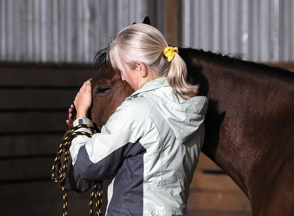 Перед тем как надевать упряжь, установите контакт с животным
