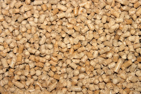 Древесные опилки хорошо впитывают влагу и не вызывают аллергии у животных