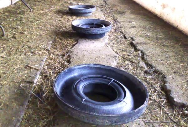 Непригодная тракторная шина может стать отличной поилкой как для овец, так и для прочих животных