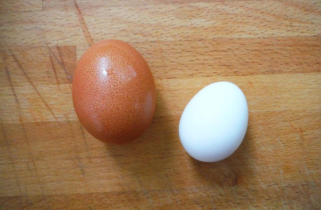 Разница между обычным яйцом и яйцом бентамки