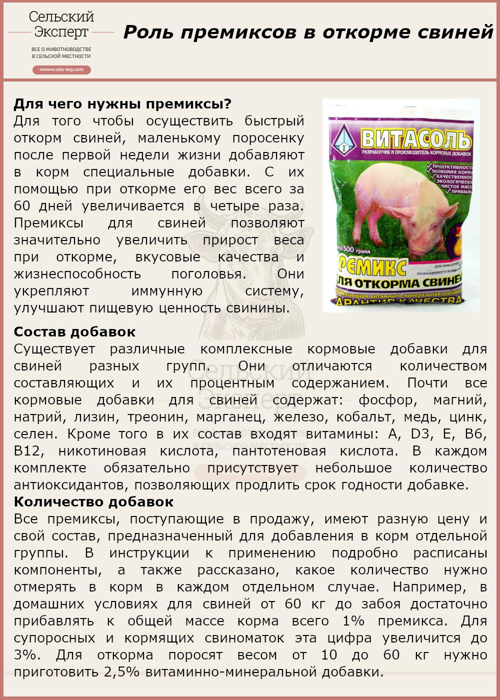 Роль премиксов в откорме свиней