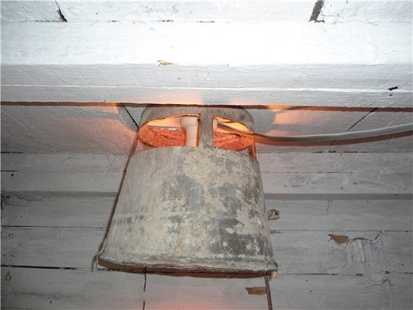 Лампы в курятнике одновременно играют роль источника и света и тепла