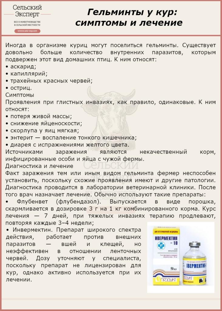 Гельминты у кур симптомы и лечение