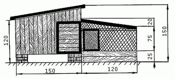 Вид крыши на примере малого курятника