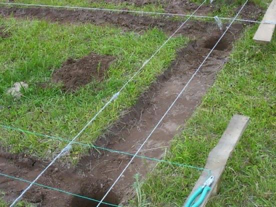 По такому же принципу необходимо подготовить ямы по всему участку, где будет располагаться птичник