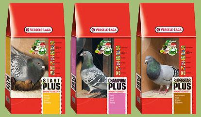 При желании корма для голубей можно приобрести в зоомагазине