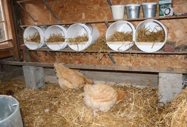 Соорудить гнезда можно из подручных материалов
