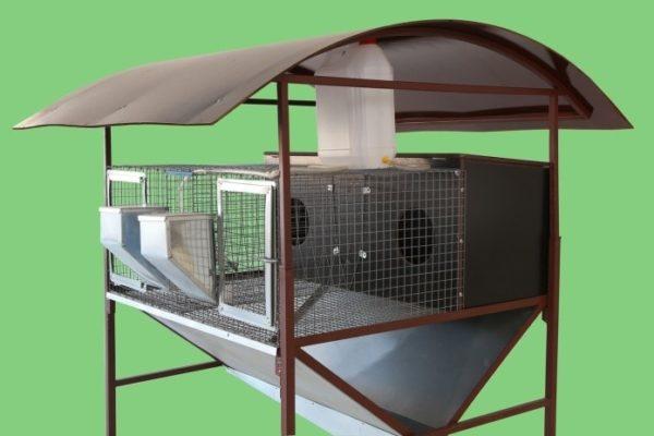 2-секционная клетка с 2 маточниками для крольчих