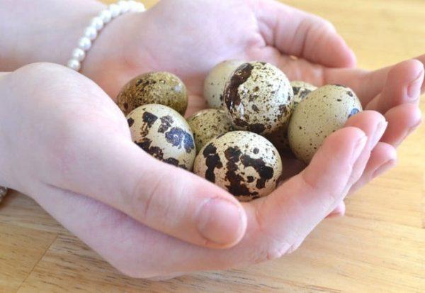 Яйца перепёлок помогают сохранить женское здоровье