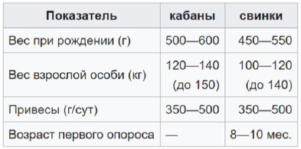 Весовые характеристики вислобрюхой свиньи
