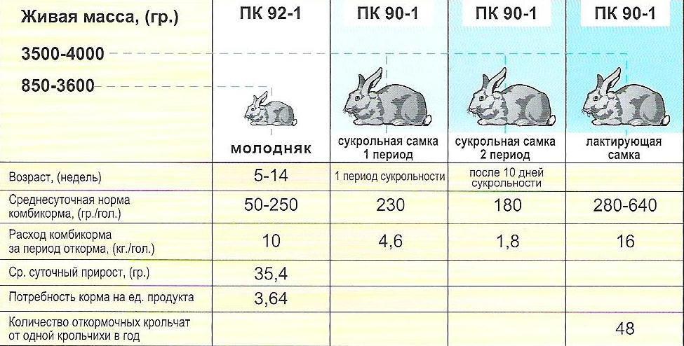 Выбирая комбикорм следует учитывать возраст кроликов