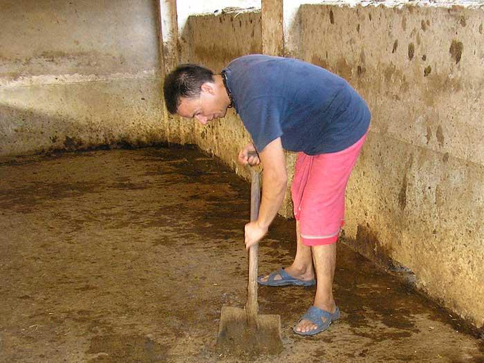 Полностью вычистите помещение для козы