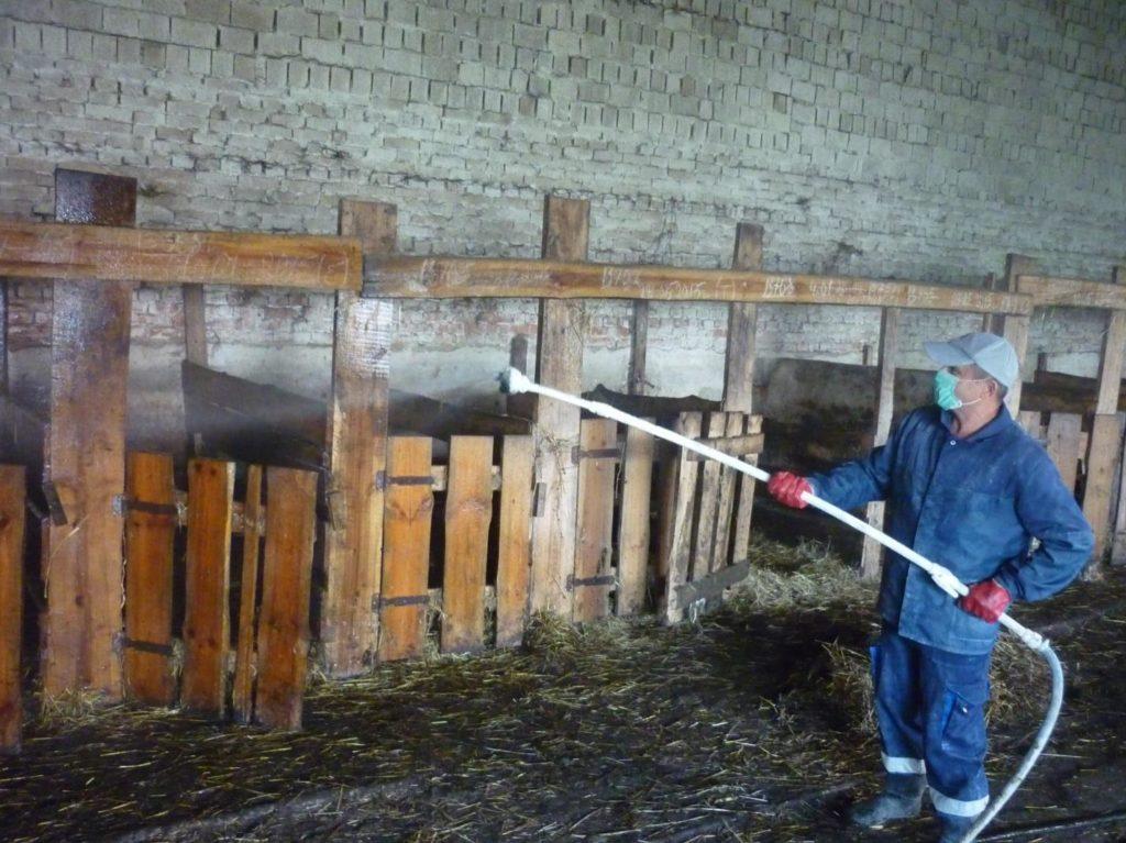 Процесс дезинфекции стен, потолка, полов после карантина