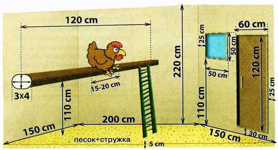 Размеры и расстояния комфортного курятника