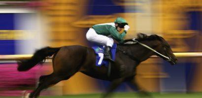 Скорость лошади