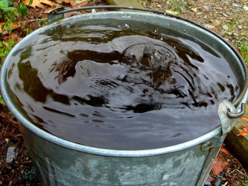 Шаг 5. Тетрациклин, Макродокс разводят в соотношении 1 г на литр теплой воды, Гилодокс и Авимутин Гидро - 1,5 мл на литр