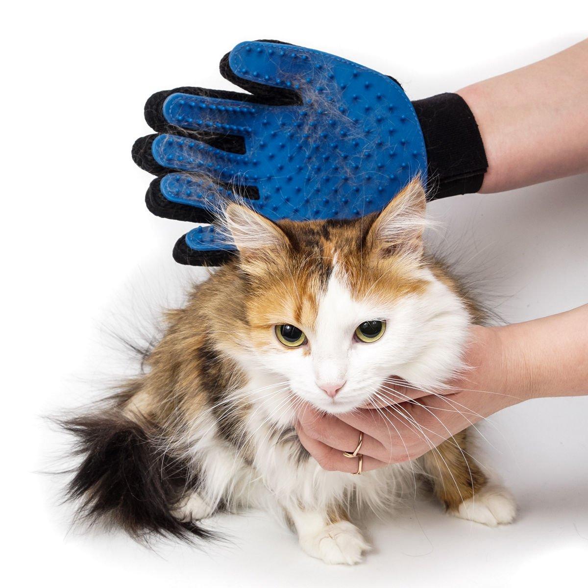 Щетка-перчатка удаляет шерсть не только у кошек и собак, но и у хорьков