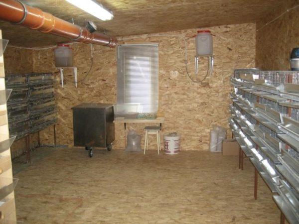 Под разведение можно переоборудовать гараж или сарай