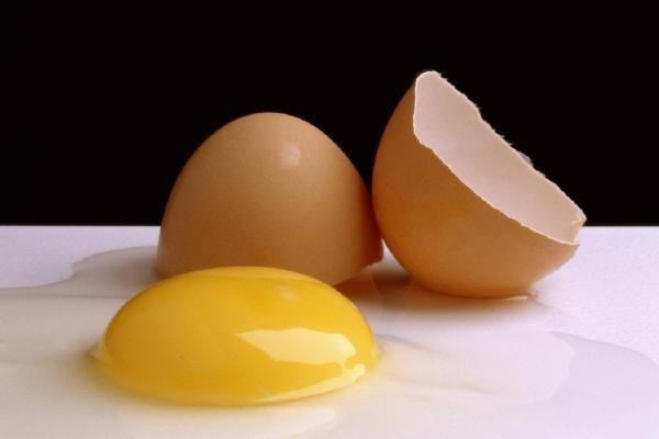 Содержимого яйца страуса хватит для приготовления нескольких блюд