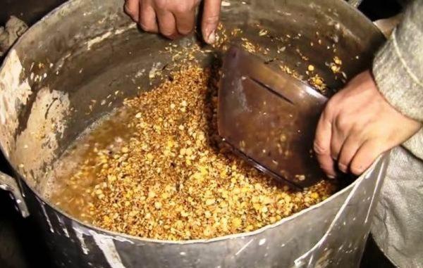 Влажные мешанки – основная пища подросших бройлеров на натуральном кормлении