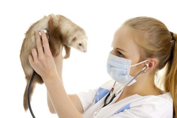 Болезнь надпочечников лечится только оперативно в клинике