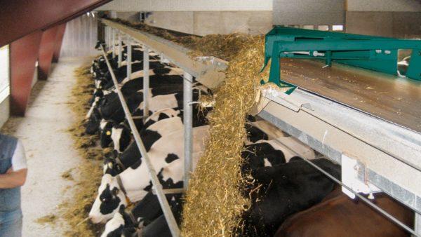 Автоматическая система подачи корма хорошо дозирует порции