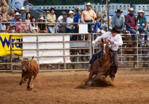 Ловля бычка на скорость