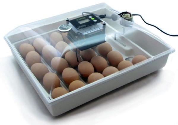 Аппарат для инкубации яиц