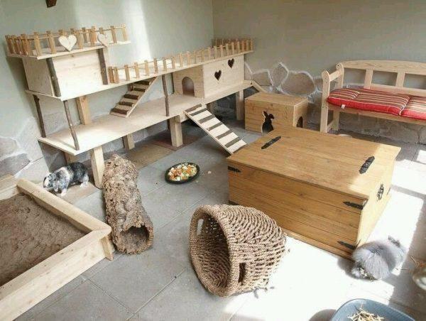 Можно соорудить полноценную игровую зону для декоративных кроликов