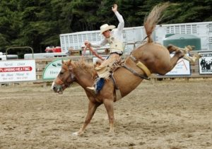 Езда на коне с седлом