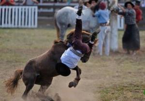 Езда на лошади без седла