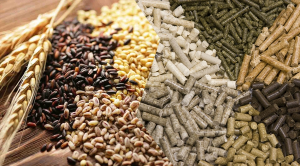 Качественные комбикорма – это гранулированные натуральные травы и зерна с витаминными добавками