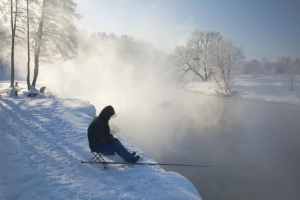 Тюрбо предпочитают отлавливать только в холодное время года