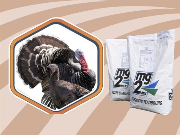 Премиксы — популярные среди птицеводов пищевые добавки