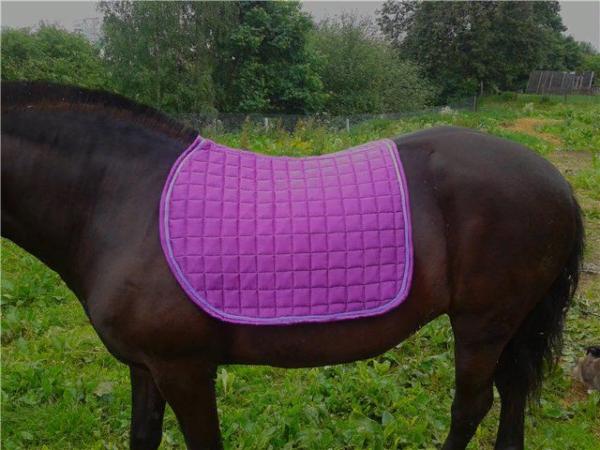 Потник служит в качестве защиты спины от травм