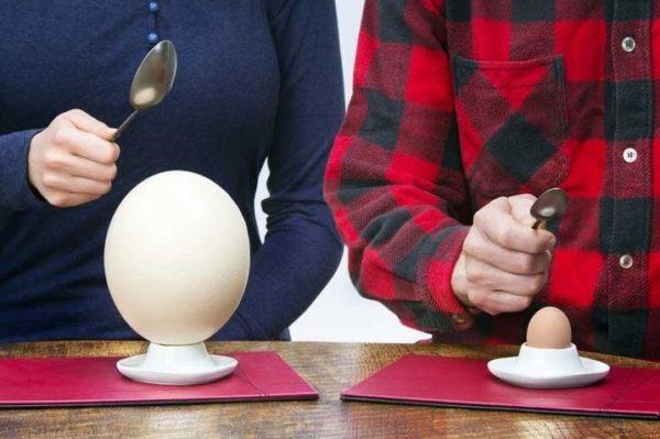 Вскрыть яйцо по аналогии с куриным без применения подручных средств не получится